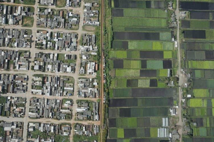 favela e campo de hortaliças