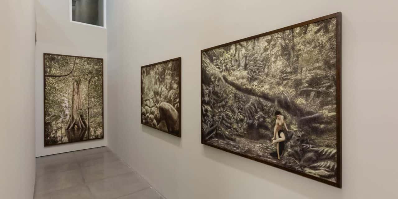Cassio Vasconcellos Fotografia Fine Art Expo Driades E Faunos Rio 2020 012